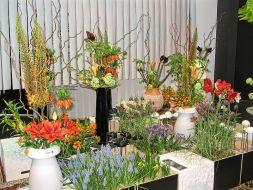 Flower show in Keukenhof