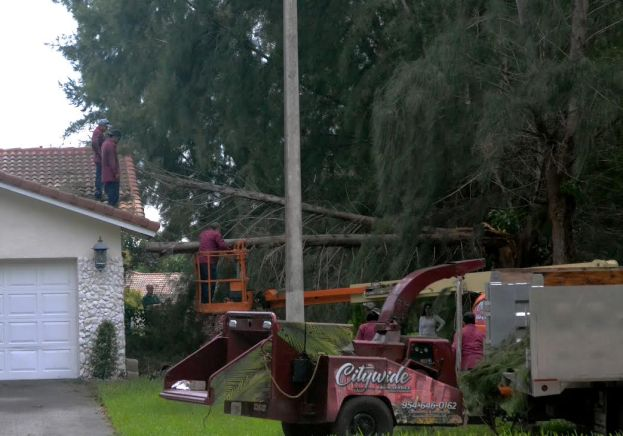 Landscape workers try to remove a tree that fell on a house in Coral Springs, Fla. South Florida residents living in Broward and Palm Beach counties were encouraged to evacuate due to wind speeds that reached over 100 mph Oct. 6.