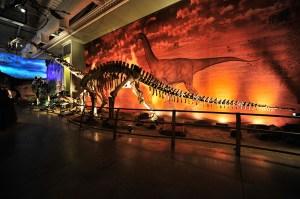 dinozor-muzesi