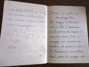 pensierino di terza elementare di Susanna Albini - Lo Stirone