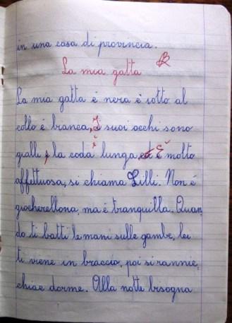 pensierino delle elementari di Susanna Albini - La mia gatta 1° parte