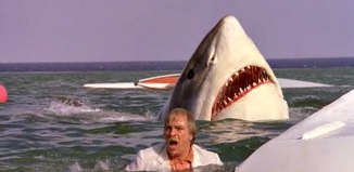 Great white shark attack