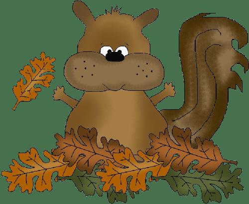 Esquilo cartoon