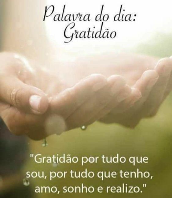 Palavra do dia: Gratidão