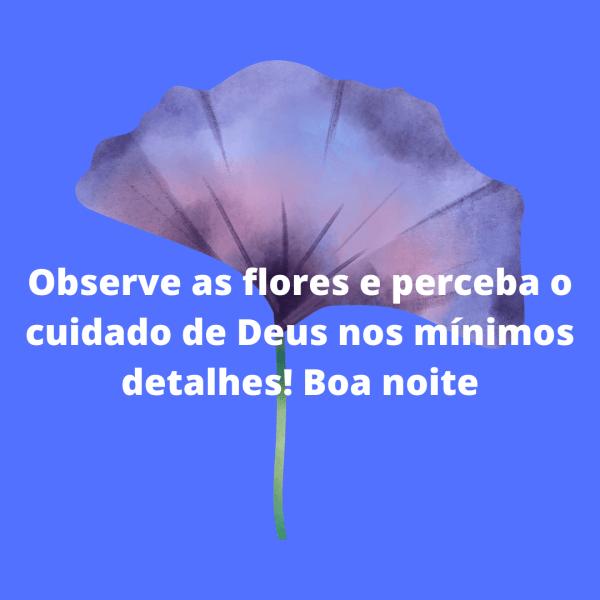 as flores e seus detalhes