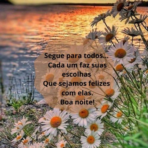 Imagem com boas energias de boa noite com flores lindas