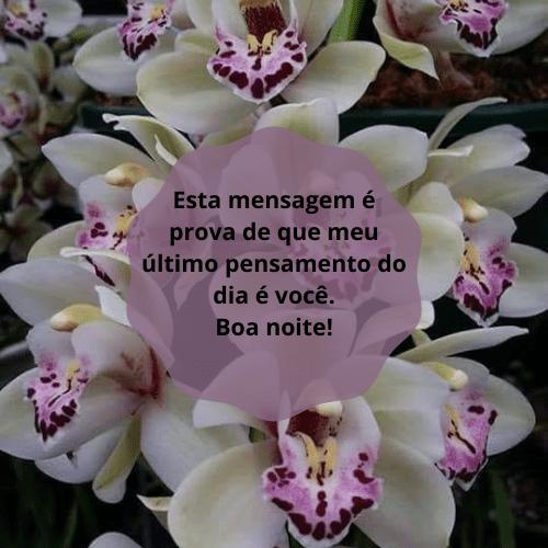 Mensagem de boa noite lida com flores
