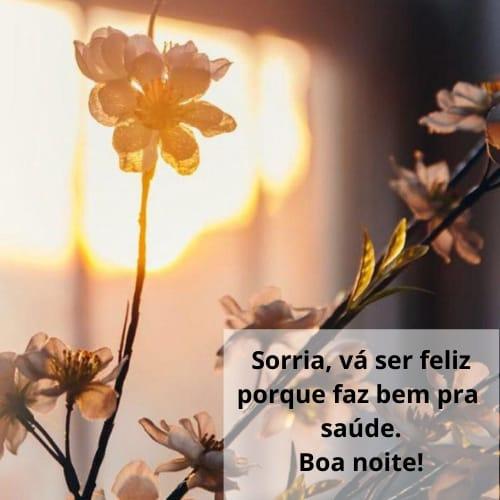 Mensagem de noite com flores lindas