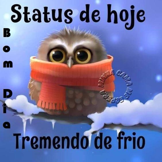 Status de hoje: tremendo de frio