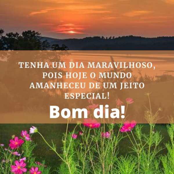 Bom dia maravilhosos e especial para te deixar feliz