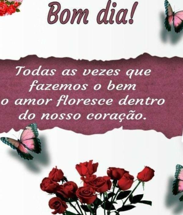Bom dia o amor floresce