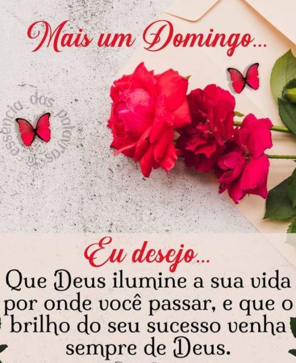 Deus ilumine sua vida