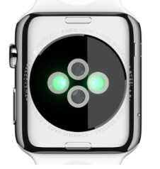 Apple Watch Unterseite
