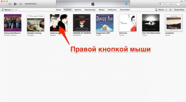 Informații despre fișiere în iTunes