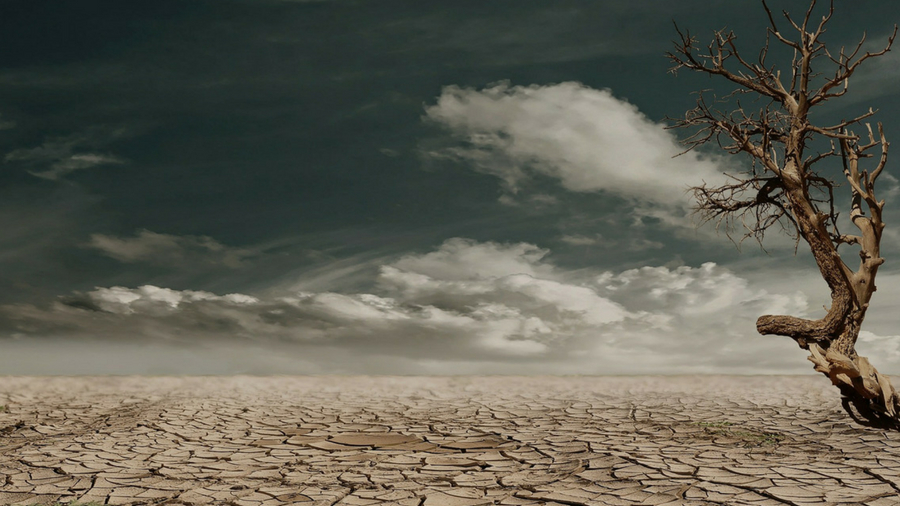 photo of a drought-stricken landscape