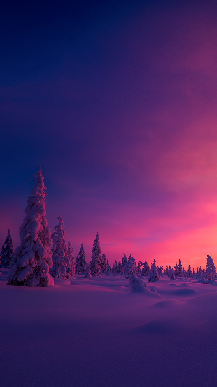 Winter North Pole Morning Iphone Wallpaper Iphone Wallpapers