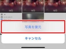 iPhoneの「最近削除した項目」から写真を復元する (4)
