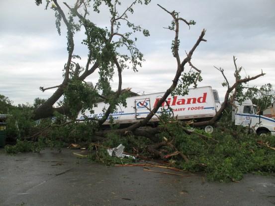 wind damage 2