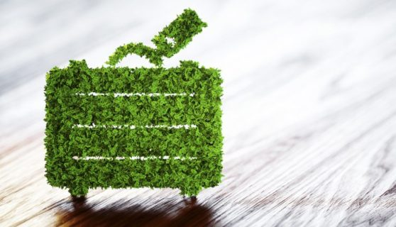 Green Project Management01