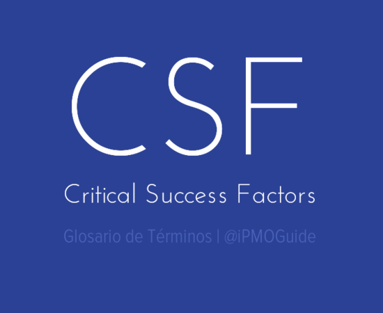 CSF (Critical Success Factors)