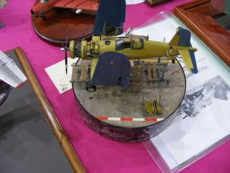 Scale ModelWorld 2010 competition photo by Tony Horton (19)