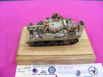 Scale ModelWorld 2010 competition photo by Tony Horton (24)