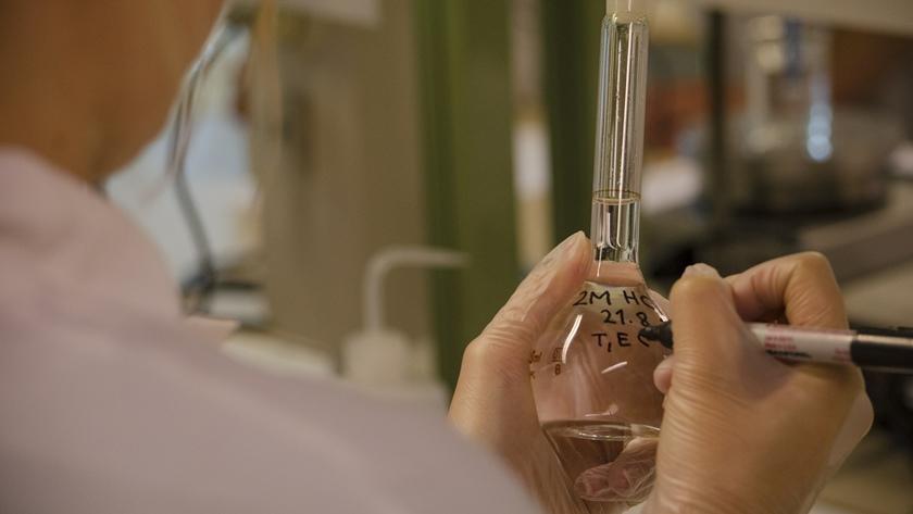 badanie in vitro