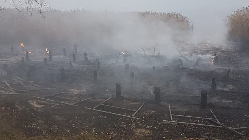 spalony pomost w Trzebieży