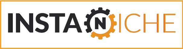 InsaNiche Logo Large
