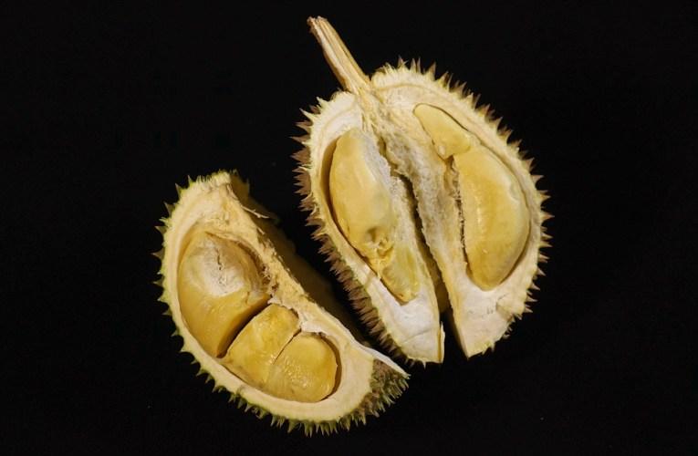 Sejarah dan Nama Latin Durian