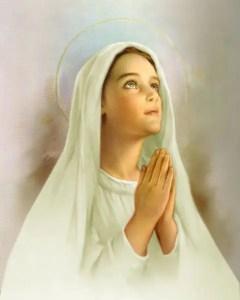 L'IMMACOLATA CONCEZIONE della Beata Vergine Maria - 8 dicembre
