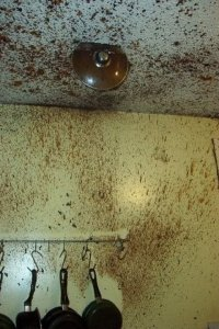 Pot Explosion - Kitchen disaster