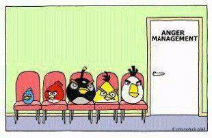 Angry birds-Anger management