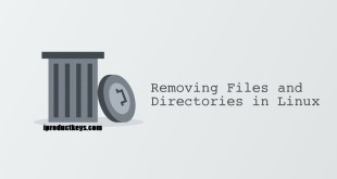 Remove Files and Directories Linux