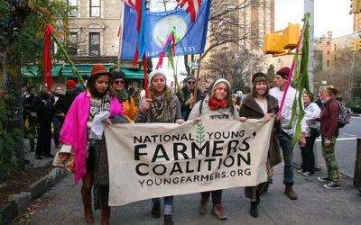Occupy the Food System