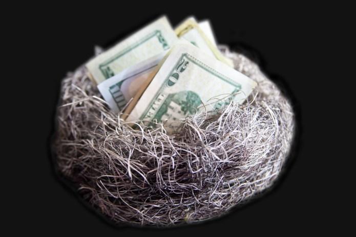 nest-egg-money