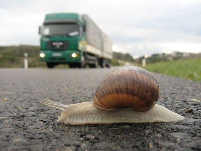 snail-truck-slow