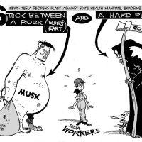 elon musk and tesla worker cartoon