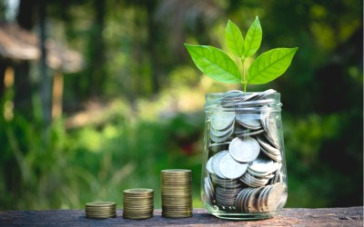philanthropy and charitable giving - charity - private foundations