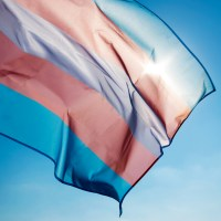trans rights - transgender flag