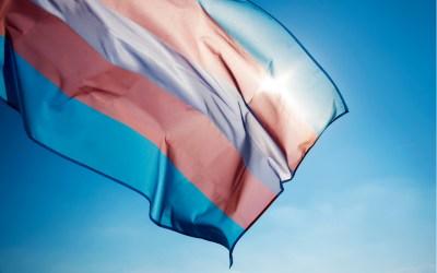 trans rights - transgender flag