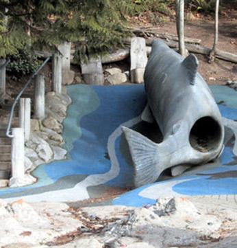 salmon-slide-carkeek-park