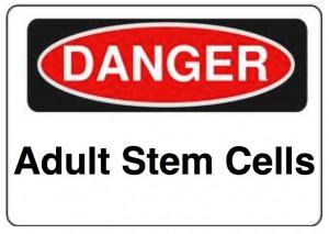 danger-stem-cells1-300x2131
