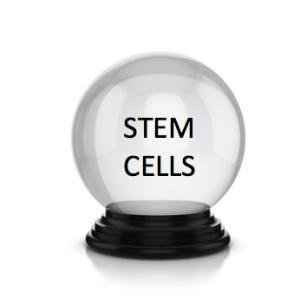 stem-cell-crystal-ball-300x3001