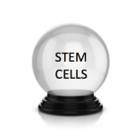 Top 20 predictions for stem cells & regenerative medicine in 2018