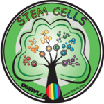 Stem Cell Person of the Year 2013 Award Update