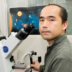 Interview with Dr. Teru Wakayama on STAP stem cells