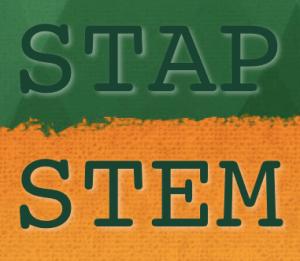 STAP cells