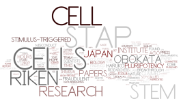 STAP Cell World Cloud