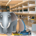 Elephant in the lab series: top list of science excuses